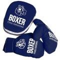 Боксерский набор №7 (лапа и перчатки) ткань