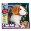 Интерактивный говорящий щенок Салли 22см с набором доктор,пульт-поводок в кор. МОЙ ПИТОМЕЦ в кор12шт