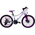 "24"" Велосипед NAMELESS Alloy Disc J4000DW"